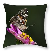 Butterfly Blossom Throw Pillow by Christina Rollo