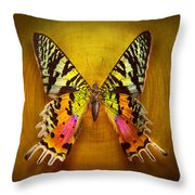 Butterfly - Butterfly Of Happiness  Throw Pillow by Mike Savad