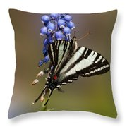 Butterfly Delight Throw Pillow by Lara Ellis