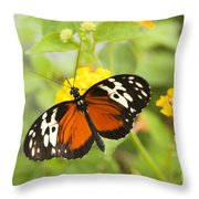 Butterfly Wings Throw Pillow by Anne Gilbert