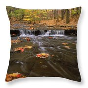 Buttermilk Falls Throw Pillow by Dale Kincaid