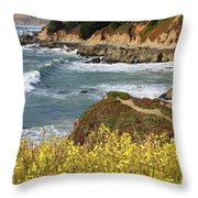 California Coast Overlook Throw Pillow by Carol Groenen