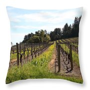 California Vineyards In Late Winter Just Before The Bloom 5d22167 Throw Pillow by Wingsdomain Art and Photography