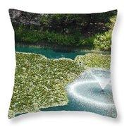 Calistoga Summer Throw Pillow by Mini Arora