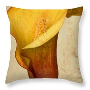 Calla Lily Vintage  Throw Pillow by Heidi Smith