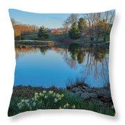 Calm Evening Throw Pillow by Bill  Wakeley
