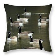 Calm Waters Throw Pillow by Karen Wiles