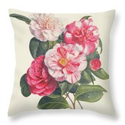Camelias Throw Pillow by Augusta Innes Withers