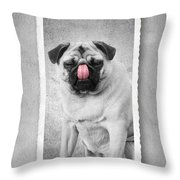 Can You Touch Your Nose With Your Tongue Throw Pillow by Edward Fielding