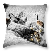 Canada geese family Throw Pillow by Elena Elisseeva