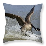 Canada Goose Touchdown Throw Pillow by Bob Christopher