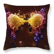 Cancer Cell Division Throw Pillow by SPL and Photo Researchers