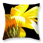 Canopy Of Petals Throw Pillow by Karen Wiles