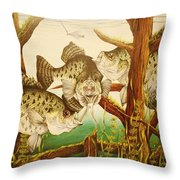 Captivating Crappies Throw Pillow by Bruce Bley