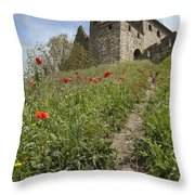 Carcassonne Poppies Throw Pillow by Robert Lacy