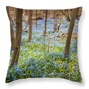 Carpet Of Blue Flowers In Spring Forest Throw Pillow by Elena Elisseeva
