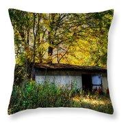 Casa Fantasma Throw Pillow by Ester  Rogers