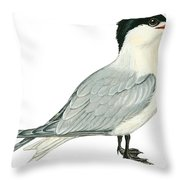 Caspian tern Throw Pillow by Anonymous