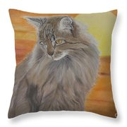Cat And Sunset  Throw Pillow by Cybele Chaves