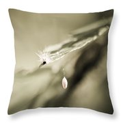 Caterpillar In Waiting Throw Pillow by Carolyn Marshall