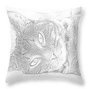 Cat's Eye Throw Pillow by J D Owen