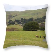 Cattles at Fernandez Ranch California - 5D21061 Throw Pillow by Wingsdomain Art and Photography