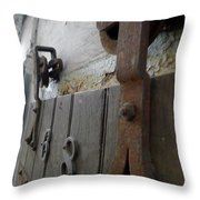 Cell 6x8 Throw Pillow by Richard Reeve