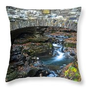 Central Cascade Throw Pillow by Frozen in Time Fine Art Photography