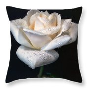 Champagne Rose Flower Macro Throw Pillow by Jennie Marie Schell