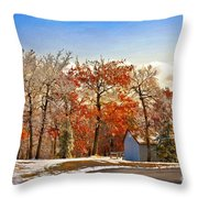 Change Of Seasons Throw Pillow by Lois Bryan