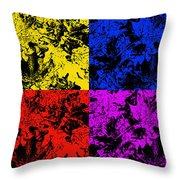 Changing Seasons Throw Pillow by Aimee L Maher Photography and Art Visit ALMGallerydotcom