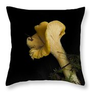 Chanterelle Mushroom Throw Pillow by Angie Vogel