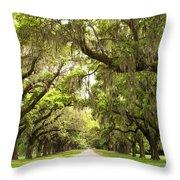 Charleston Avenue Of Oaks Throw Pillow by Stephanie McDowell