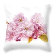 Cherry Blossoms Arrangement Throw Pillow by Elena Elisseeva