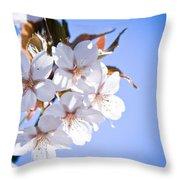 Cherry Tree Blossoms Close Up Throw Pillow by Raimond Klavins