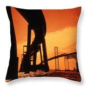 CHESAPEAKE BAY BRIDGE Throw Pillow by Skip Willits