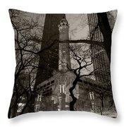 Chicago Water Tower B W Throw Pillow by Steve Gadomski