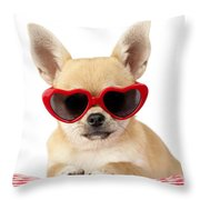 Chihuahua In Heart Sunglasses Dp813 Throw Pillow by Greg Cuddiford