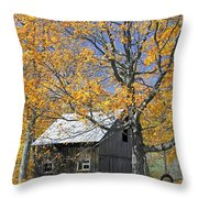 Childhood Memories Tire Swing  Throw Pillow by Timothy Flanigan