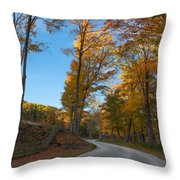 Chillin' On A Dirt Road Square Throw Pillow by Bill Wakeley