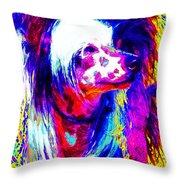Chinese Crested Dog 20130125v1 Throw Pillow by Wingsdomain Art and Photography