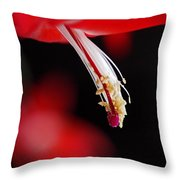 Christmas Cactus Pistil and Stamens Throw Pillow by Rona Black