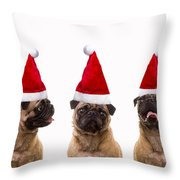 Christmas Caroling Dogs Throw Pillow by Edward Fielding