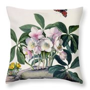 Christmas Rose Throw Pillow by Georg Dionysius Ehret
