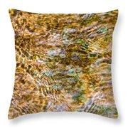 Clean Stream 1 - Featured 2 Throw Pillow by Alexander Senin