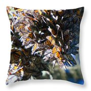 Clustering Monarch Butterflies Throw Pillow by Patricia Sanders