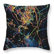 Coalescence Throw Pillow by James W Johnson