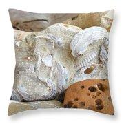 Coastal Shell Fossil Art Prints Rocks Beach Throw Pillow by Baslee Troutman