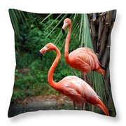Code Pink Throw Pillow by Skip Willits