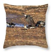 Collecting Mud Throw Pillow by Douglas Barnard